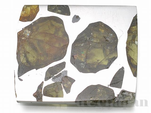 【処分価格】 エスクエル隕石(スライス)27×22×2mm