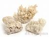 あられ石/アラゴナイト6〜8cm(原石) 3個