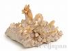 あられ石/アラゴナイト6×10cm(原石) 1個