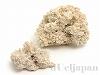 あられ石/アラゴナイト6〜8cm(原石) 2個