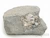 ハーキマーダイヤモンド9×10cm(母岩原石)