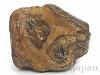 【コレクション】アマゾン川のアゲート原石14×18×9cm