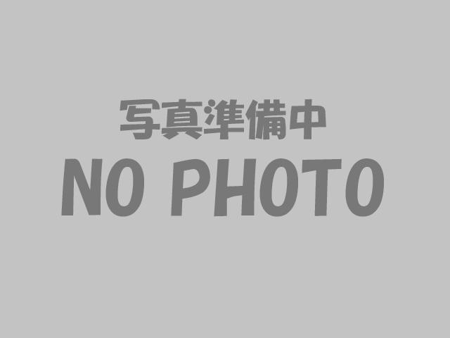 片穴丸玉 20mm 4粒 コットンパール(ダークブラウン)