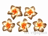 樹脂フラワー(ブラウン×オレンジ) 13×5mm ×5個