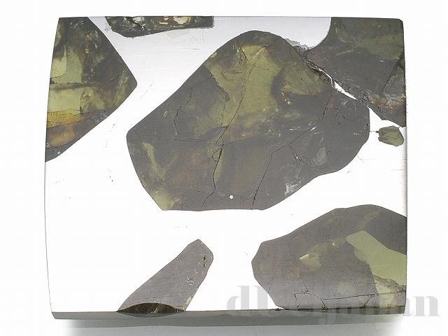 エスクエル隕石(スライス)23×20×2mm