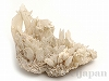 あられ石/アラゴナイト5×9cm(原石) 1個