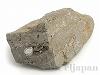 ハーキマーダイヤモンド7×11cm(母岩原石)