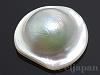 母貝付きマベパール16〜20mm(穴無し) 1個